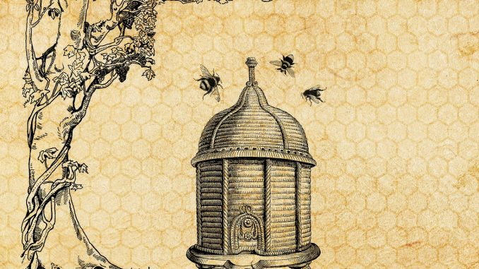 ancient beehive picture